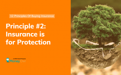 Principle #2 – Insurance is for Protection